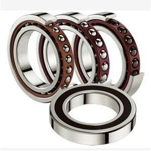 F-207033 INA Cylindrical roller bearing