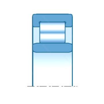 E-RNU25201 NTN Cylindrical roller bearing
