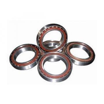 HK0409 IO Cylindrical roller bearing