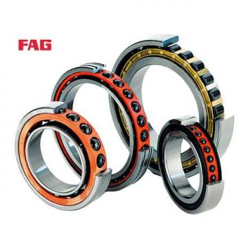 FCDP 170236650 IB Cylindrical roller bearing