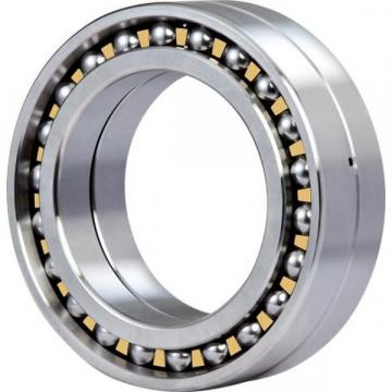 EE125095/125145 NK Cylindrical roller bearing